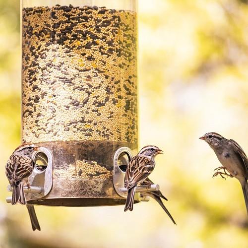 Хранилки за птици и животни