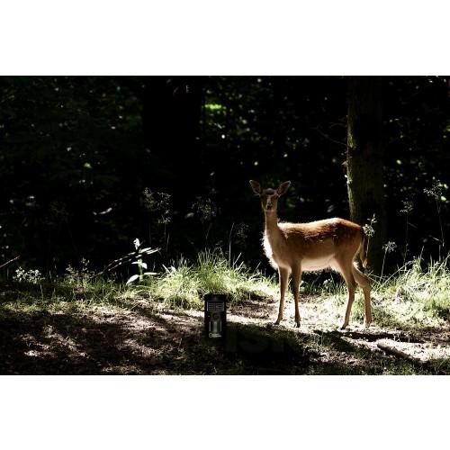 Камера за наблюдение на дивата природа Bresser National Geographic